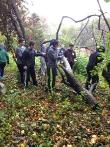 DoS Woods Photo Oct 22, 10 52 55 AM