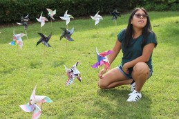wh-pinwheels-for-peace-7